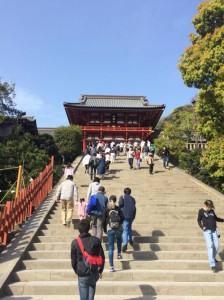 4_鶴岡八幡宮